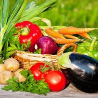 Диета на 1 месяц - одна из наиболее популярных диет среди женского пола. 1