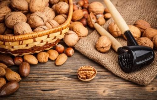 Орехи для иммунитета: чем хороши и от чего помогают. Как приготовить смесь орехов с курагой и медом для иммунитета 6